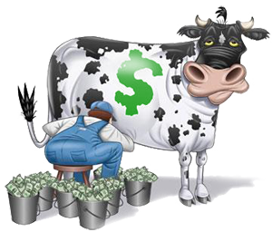 Image result for cash cow pictures